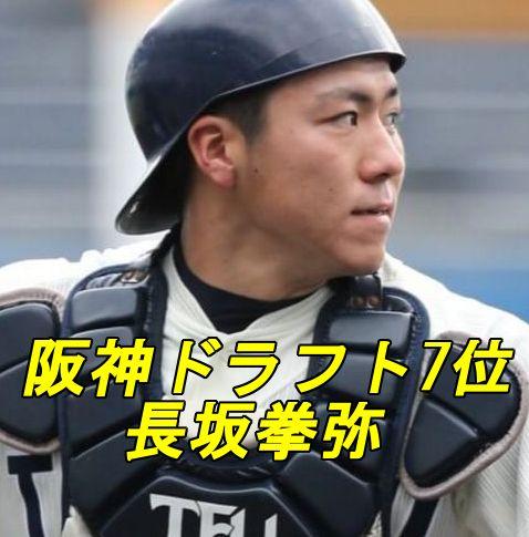 長坂拳弥・阪神