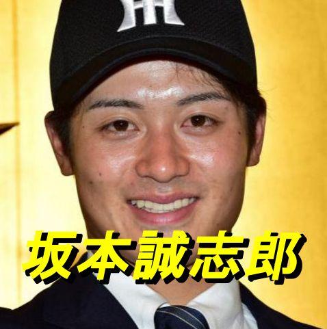 坂本誠志郎の画像 p1_27