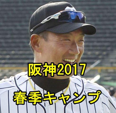 阪神キャンプ2017