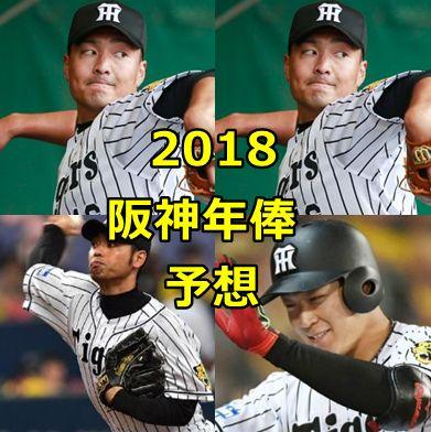 阪神2018・年俸予想