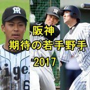 阪神2017期待の若手野手